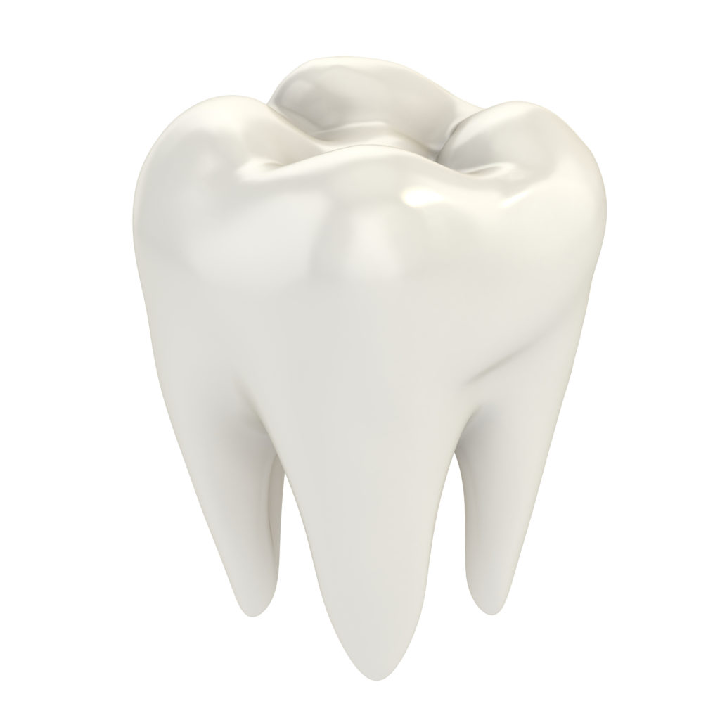 3D model of a lost tooth